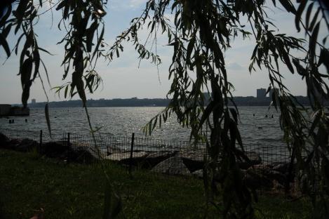 Riverside Park     by Kerry